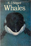 BOOK - Whales