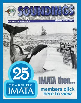 IMATA 25th Anniversary Soundings Magazine Cover