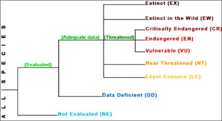 Endangered and threatened species chart